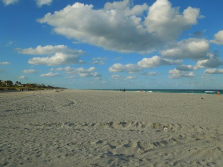beach restoration delray