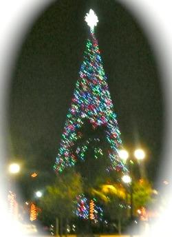 Christmas Tree Lighting In Delray 100Foot Christmas Tree