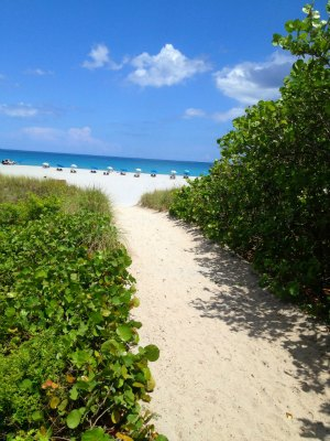 Make Delray Beach Fl Your Next Florida Family Vacation
