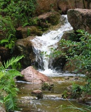 Japanese Gardens in Florida Morikami Japanese Gardens